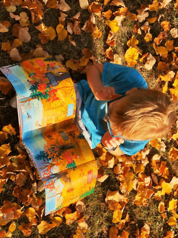 Jesień. Pory roku krok po kroku Katarzyna Moryc