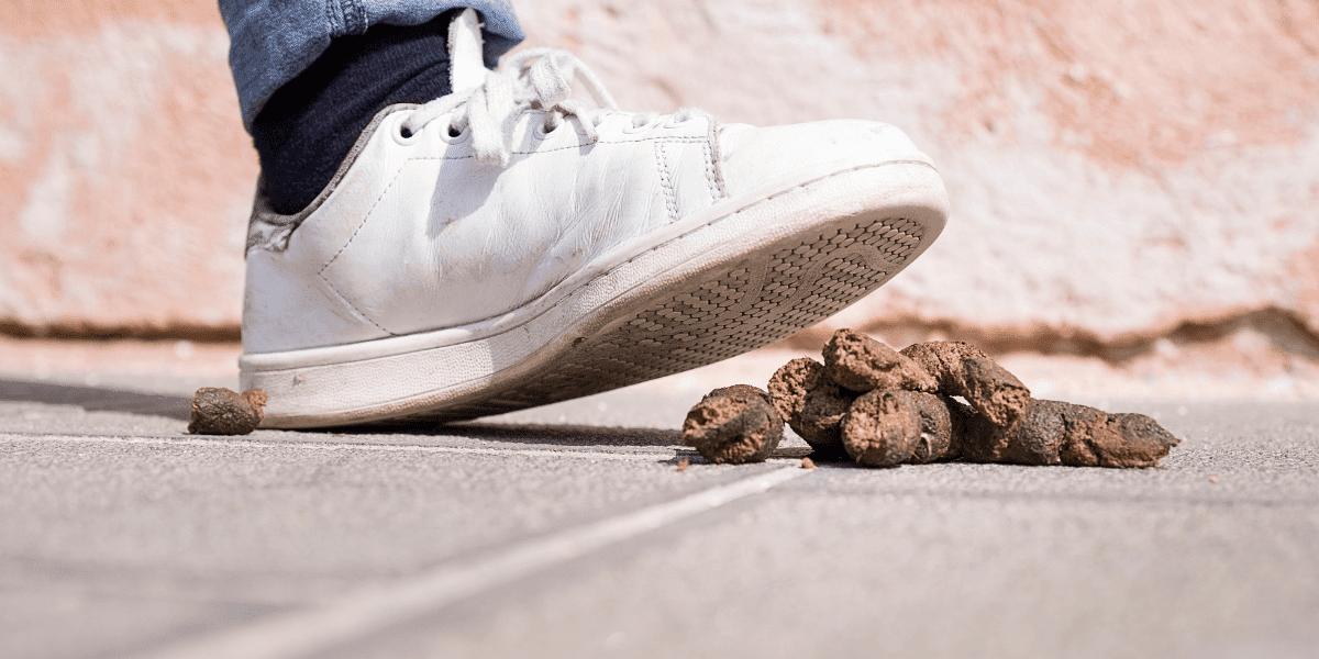 Noga z białym butem tuż przed wdepnięciem w psią kupę -piątek 13 bajkowierszownia